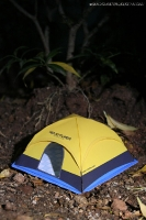 Dome tent by Sonny, Adhiwardhana and Julius
